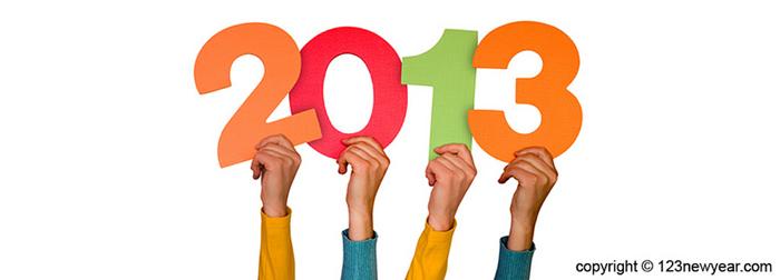 novi SEO u 2013